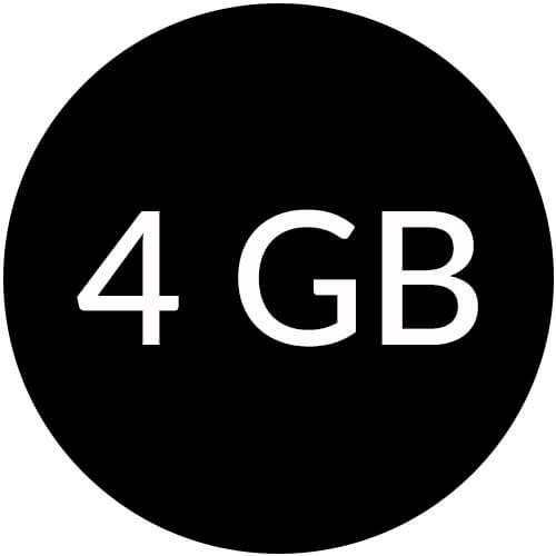 4GB Flash Drives